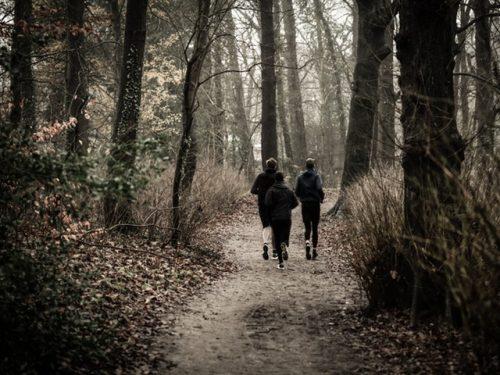 Tre barn springer i skogen